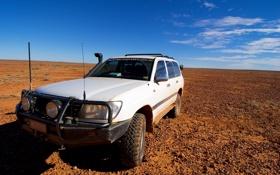 Картинка небо, горизонт, джип, саванна, Toyota Land Cruiser, HZJ 105