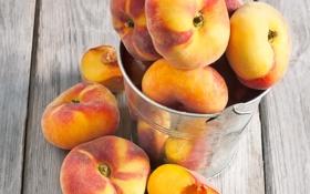 Обои ведерко, bucket, nectarine, фрукт, нектарин, fruit