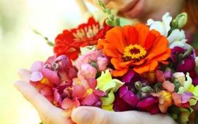 Обои цветы, рука, Девушки