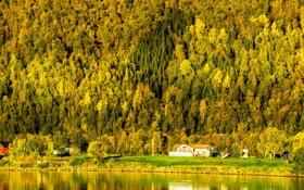 Обои закат, лес, осень, норвегия, дом, море, залив