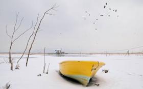 Картинка зима, снег, птицы, лодка
