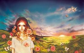 Обои поле, лето, небо, девушка, бабочки, цветы, рассвет