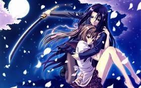 Картинка небо, ночь, оружие, девушки, луна, катана, аниме