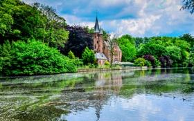 Картинка зелень, деревья, природа, город, парк, река, замок