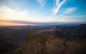Картинка горы, куст, Природа