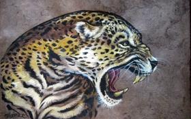 Картинка кошка, рисунок, зубы, арт, пасть, леопард, живопись