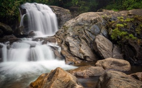 Картинка природа, водопад, джунгли, India, Kerala