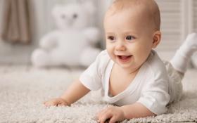 Обои радость, игрушка, смех, ковёр, мишка, ребёнок, сероглазый