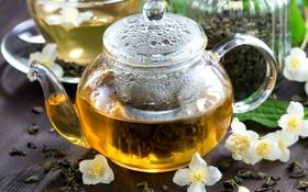 Обои чайник, напиток, заварник, жасмин, зеленый чай