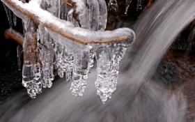 Обои зима, вода, ручей, лёд, ветка, сосульки