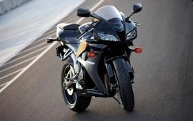 Обои moto, хонда, honda, мото, фото