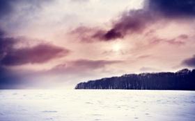 Картинка зима, пейзаж, природа