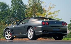 Картинка небо, деревья, серый, Ferrari, суперкар, феррари, вид сзади