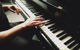 Обои игра, руки, клавиши, пианино, piano