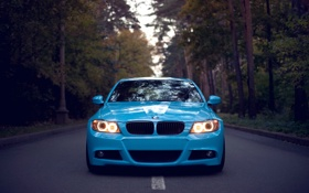 Обои дорога, лес, бмв, Bmw, голубая, front, свет фар