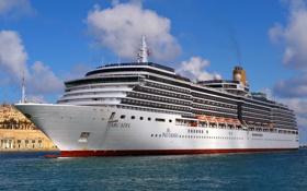 Картинка фото, корабль, круизный лайнер, Arcadia