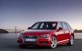 Картинка Audi, ауди, TDI, quattro, Avant, 2015, S line