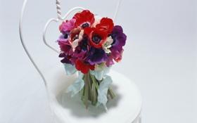 Обои цветы, букет, тюльпаны, свадебный
