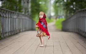 Картинка мост, клубника, девочка, платок, горшочек