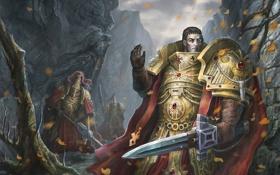 Обои листья, оружие, меч, арт, ущелье, мужчины, клинки