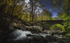 Картинка лес, река, скалы, небо, облака, деревья, водопад