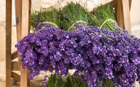 Обои букет, flowers, лаванда, lavender