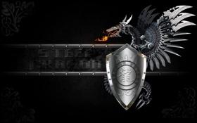 Обои металл, дракон, арт, иероглифы, щит, черный фон, Steel Dragon