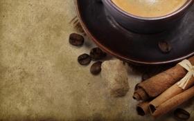 Обои корица, зерна, блюдце, сахар, кофе, чашка, фон