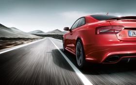 Обои Audi, скорость, трасса, красная, RS5