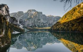 Картинка лес, пейзаж, река, горы, природа