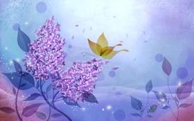 Обои абстракция, бабочка, открытка, сирень, вектор, цветы