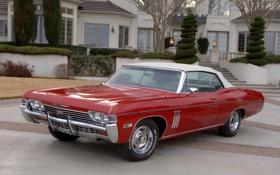 Обои 1968, Impala, Convertible, SS 427