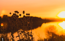 Картинка закат, природа, река, фокус, GK media, Grigory Karaman, Калуга
