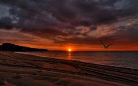 Картинка песок, море, пляж, небо, пейзаж, закат, природа