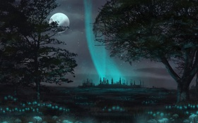 Обои деревья, цветы, ночь, город, луна, свечение, арт
