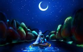 Картинка вода, ночь, отражение, луна, звёзды, ковёр-самолёт, Алладин. Жасмин