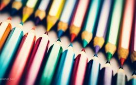Обои фиолетовый, макро, синий, красный, фотограф, карандаш, photography