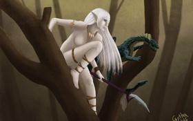 Обои девушка, дерево, дракон, арт, копье, эльфийка, Barbara Kisło