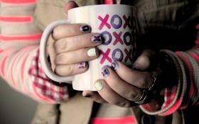 Обои Cup, Hands, Holding, XOXOXO