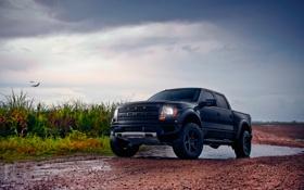 Обои природа, Ford, Raptor, пасмурность, F-150, SVT, SuperCrew