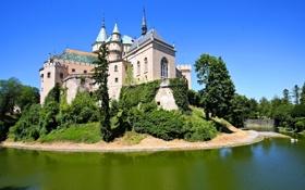 Обои зелень, деревья, пруд, замок, кусты, ров, Словакия