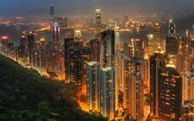 Обои город, огни, Гонконг, небоскребы, мегаполис