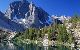 Обои лес, горы, озеро, Калифорния, США