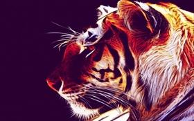 Картинка тигр, стиль, фон, обои, ubuntu