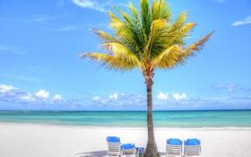 Обои облака, тропики, небо, пальма, море, песок, пляж