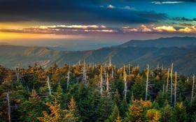 Обои Кентукки, лес, деревья, облака, зарево, горы, США