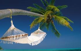 Обои пляж, пальма, океан, остров, гамак