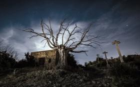 Обои ночь, кресты, кладбище