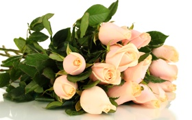 Картинка белый, листья, цветы, фон, розы, букет, розовые