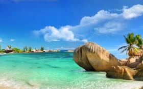 Картинка песок, море, пляж, тропики, камни, пальмы, побережье
